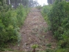 maintenance-capability-pipeline-easement-vegetation-control-after-2_1028